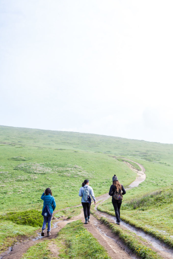 Tomales Point, Point Reyes National Seashore